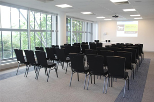 Alpine Ash Conference Room